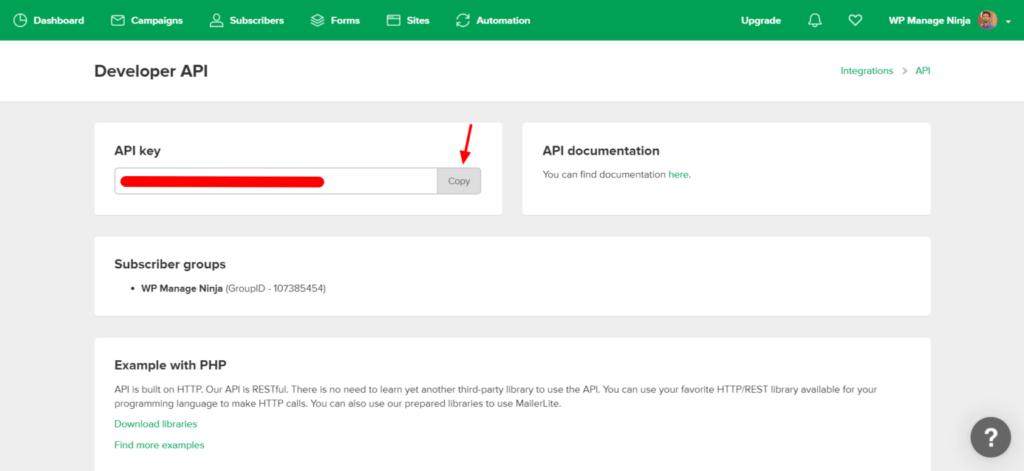 MailerLite Developer API copy - Fluent Forms